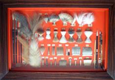 動物の毛の標本
